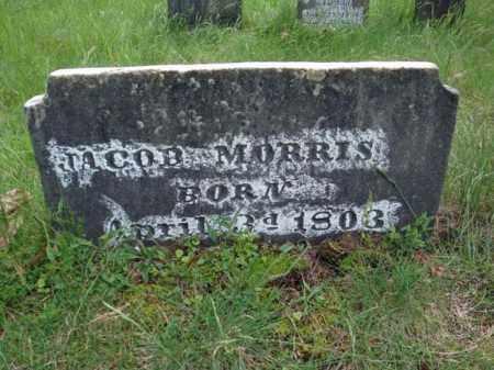MORRIS, JACOB - Albany County, New York | JACOB MORRIS - New York Gravestone Photos