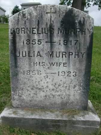 MURPHY, CORNELIUS - Albany County, New York | CORNELIUS MURPHY - New York Gravestone Photos