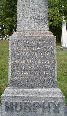 MURPHY, JAMES - Albany County, New York   JAMES MURPHY - New York Gravestone Photos