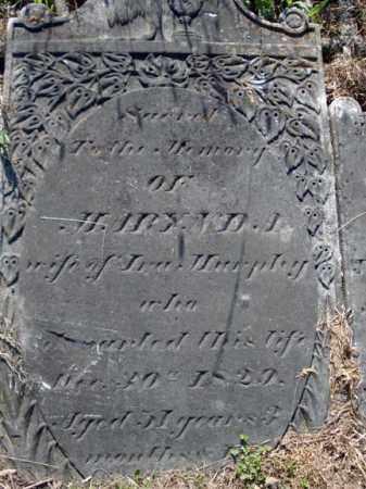 MURPHY, MARY - Albany County, New York | MARY MURPHY - New York Gravestone Photos