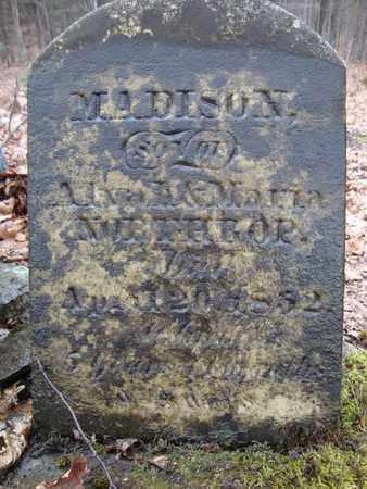 NORTHROP, MADISON - Albany County, New York   MADISON NORTHROP - New York Gravestone Photos