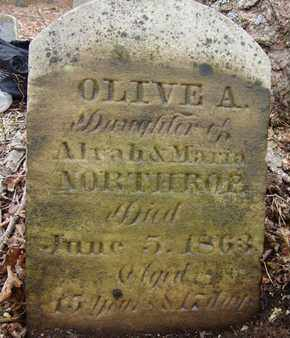 NORTHROP, OLIVE A - Albany County, New York | OLIVE A NORTHROP - New York Gravestone Photos