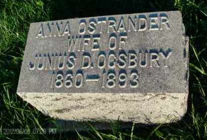 OSTRANDER, ANNA - Albany County, New York | ANNA OSTRANDER - New York Gravestone Photos