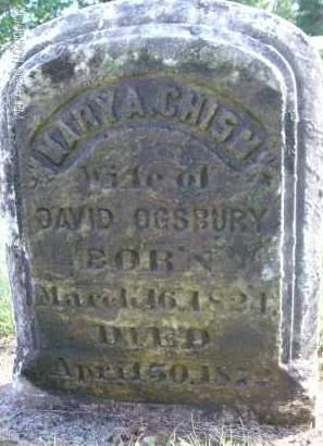 OGSBURY, MARY A - Albany County, New York | MARY A OGSBURY - New York Gravestone Photos