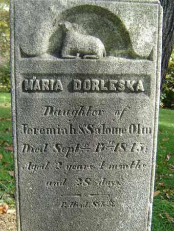 OLIN, MARIA DORLESKA - Albany County, New York | MARIA DORLESKA OLIN - New York Gravestone Photos