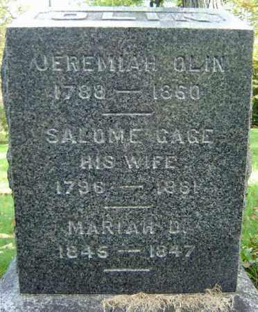 GAGE OLIN, SALOME - Albany County, New York | SALOME GAGE OLIN - New York Gravestone Photos