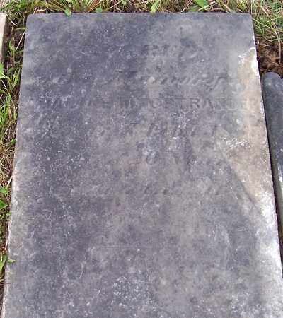 OSTRANDER, ADALINE M - Albany County, New York | ADALINE M OSTRANDER - New York Gravestone Photos