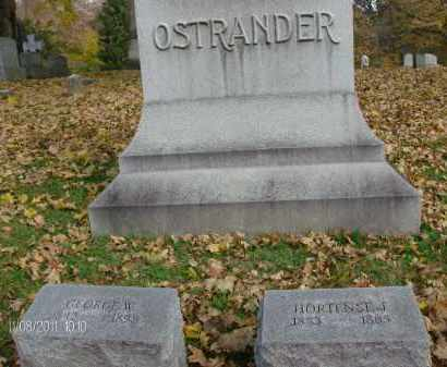 OSTRANDER, GEORGE W - Albany County, New York | GEORGE W OSTRANDER - New York Gravestone Photos