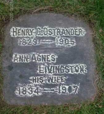 OSTRANDER, HENRY - Albany County, New York | HENRY OSTRANDER - New York Gravestone Photos