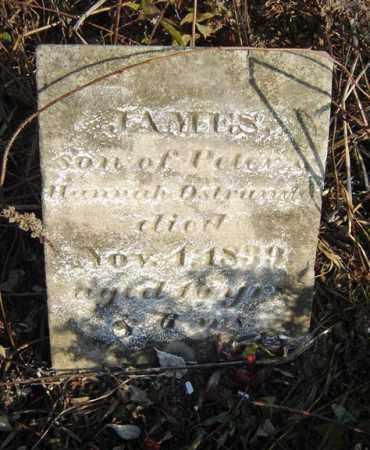 OSTRANDER, JAMES - Albany County, New York | JAMES OSTRANDER - New York Gravestone Photos