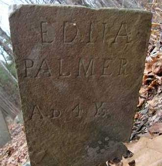 PALMER, EDNA - Albany County, New York   EDNA PALMER - New York Gravestone Photos