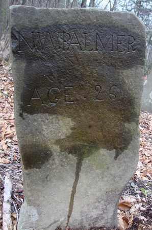 PALMER, N.W. - Albany County, New York | N.W. PALMER - New York Gravestone Photos