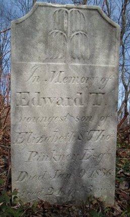 PINKNEY, EDWARD T - Albany County, New York | EDWARD T PINKNEY - New York Gravestone Photos