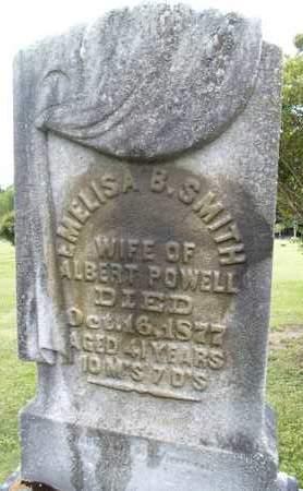 POWELL, EMELISA - Albany County, New York | EMELISA POWELL - New York Gravestone Photos