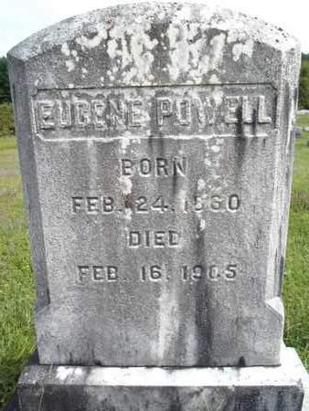 POWELL, EUGENE - Albany County, New York | EUGENE POWELL - New York Gravestone Photos