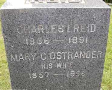 OSTRANDER, MARY - Albany County, New York | MARY OSTRANDER - New York Gravestone Photos