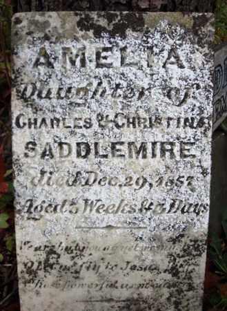 SADDLEMIRE, AMELIA - Albany County, New York | AMELIA SADDLEMIRE - New York Gravestone Photos
