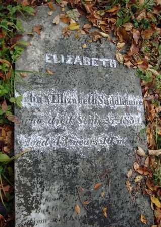 SADDLEMIRE, ELIZABETH - Albany County, New York | ELIZABETH SADDLEMIRE - New York Gravestone Photos