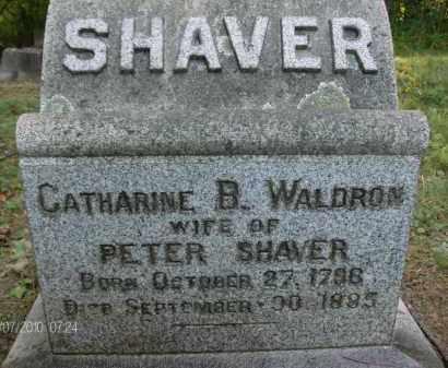 SHAVER, CATHARINE - Albany County, New York   CATHARINE SHAVER - New York Gravestone Photos