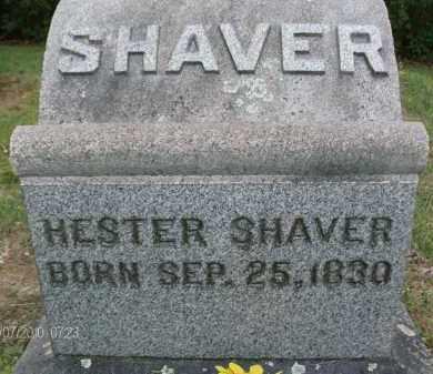 SHAVER, HESTER - Albany County, New York   HESTER SHAVER - New York Gravestone Photos