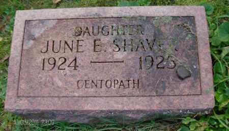 SHAVER, JUNE E - Albany County, New York   JUNE E SHAVER - New York Gravestone Photos