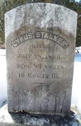 STALKER, CYRUS - Albany County, New York | CYRUS STALKER - New York Gravestone Photos