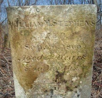 STEPHENS, WILLIAM M - Albany County, New York | WILLIAM M STEPHENS - New York Gravestone Photos