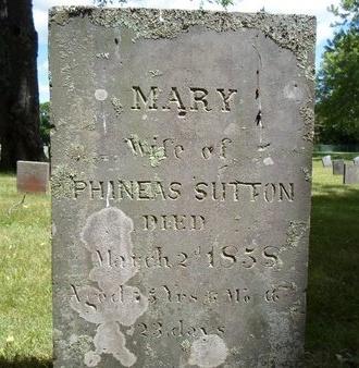 SUTTON, MARY - Albany County, New York | MARY SUTTON - New York Gravestone Photos