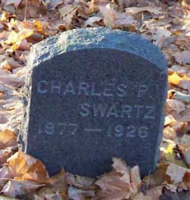 SWARTZ, CHARLES P. - Albany County, New York | CHARLES P. SWARTZ - New York Gravestone Photos
