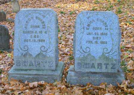 SWARTZ, JACOB - Albany County, New York | JACOB SWARTZ - New York Gravestone Photos