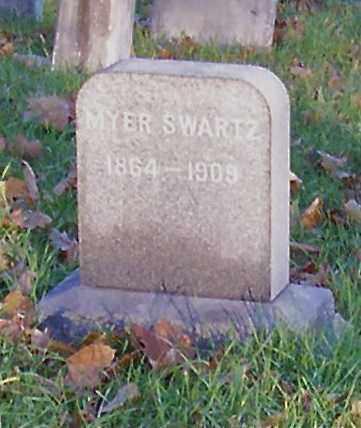 SWARTZ, MYER - Albany County, New York | MYER SWARTZ - New York Gravestone Photos