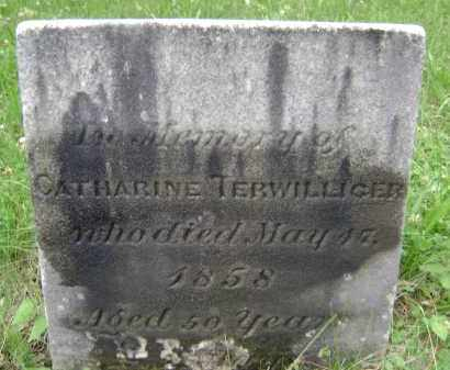 TERWILLIGER, CATHARINE - Albany County, New York   CATHARINE TERWILLIGER - New York Gravestone Photos