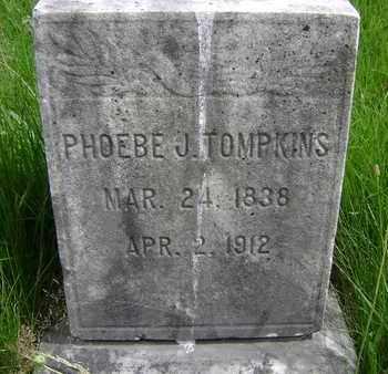 TOMPKINS, PHOEBE J - Albany County, New York | PHOEBE J TOMPKINS - New York Gravestone Photos