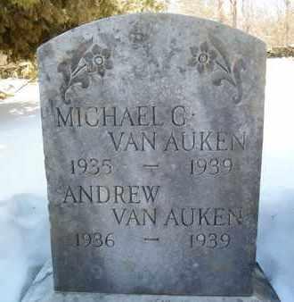VAN AUKEN, MICHAEL G - Albany County, New York | MICHAEL G VAN AUKEN - New York Gravestone Photos