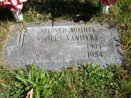 VAN DYKE, VIOLES - Albany County, New York   VIOLES VAN DYKE - New York Gravestone Photos
