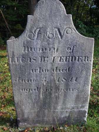VEEDER, LUCAS W - Albany County, New York | LUCAS W VEEDER - New York Gravestone Photos