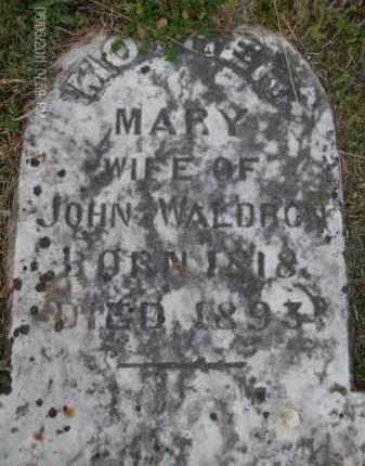 WALDRON, MARY - Albany County, New York | MARY WALDRON - New York Gravestone Photos