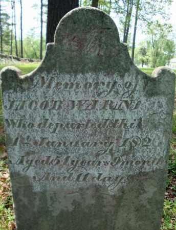 WARNER, JACOB - Albany County, New York | JACOB WARNER - New York Gravestone Photos