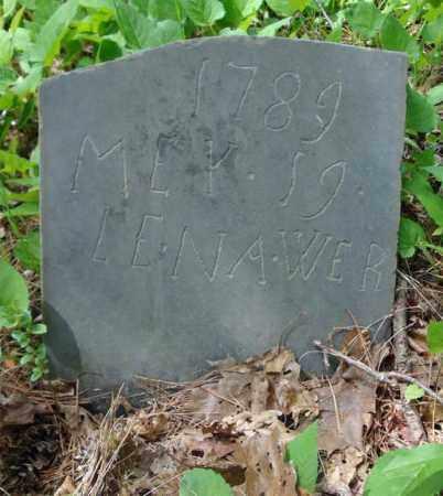 WER, LENA - Albany County, New York | LENA WER - New York Gravestone Photos