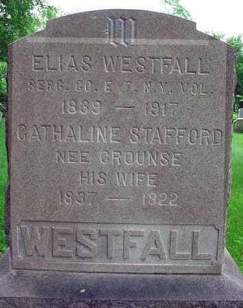 WESTFALL, ELIAS - Albany County, New York | ELIAS WESTFALL - New York Gravestone Photos
