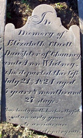 WHITNEY, ELIZABETH CLUETT - Albany County, New York | ELIZABETH CLUETT WHITNEY - New York Gravestone Photos