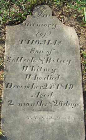 WHITNEY, THOMAS - Albany County, New York | THOMAS WHITNEY - New York Gravestone Photos