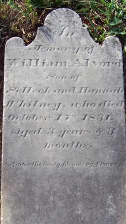WHITNEY, WILLIAM ALVORD - Albany County, New York   WILLIAM ALVORD WHITNEY - New York Gravestone Photos