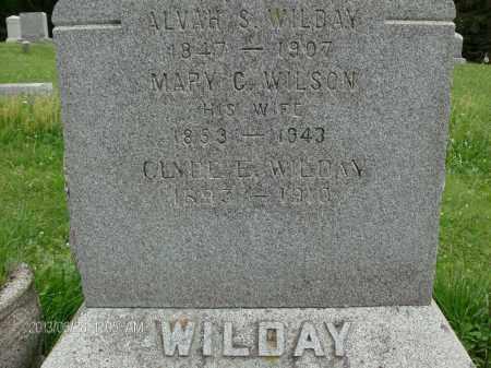 WILSON, MARY C - Albany County, New York | MARY C WILSON - New York Gravestone Photos