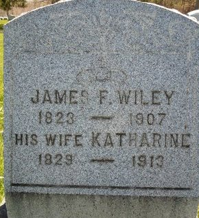 WILEY, JAMES F - Albany County, New York | JAMES F WILEY - New York Gravestone Photos