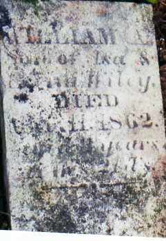 WILEY, WILLLIAM - Albany County, New York | WILLLIAM WILEY - New York Gravestone Photos