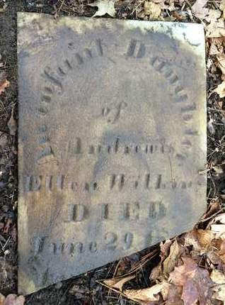 WILKINS, INFANT DAUGHTER - Albany County, New York | INFANT DAUGHTER WILKINS - New York Gravestone Photos