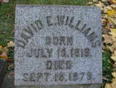WILLIAMS, DAVID E - Albany County, New York | DAVID E WILLIAMS - New York Gravestone Photos