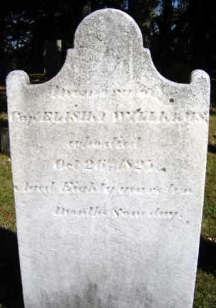 WILLIAMS, ELISHA - Albany County, New York   ELISHA WILLIAMS - New York Gravestone Photos