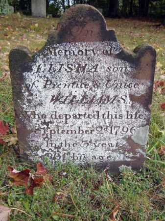 WILLIAMS, ELISHA - Albany County, New York | ELISHA WILLIAMS - New York Gravestone Photos